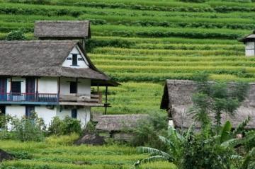 Nepal Eco Tour