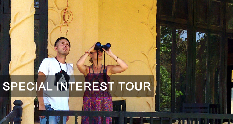 Special Interest Tour