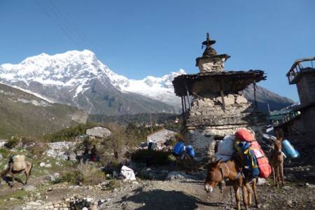 Manaslu & Tsum: Hidden Valleys of Tibetan Buddhism