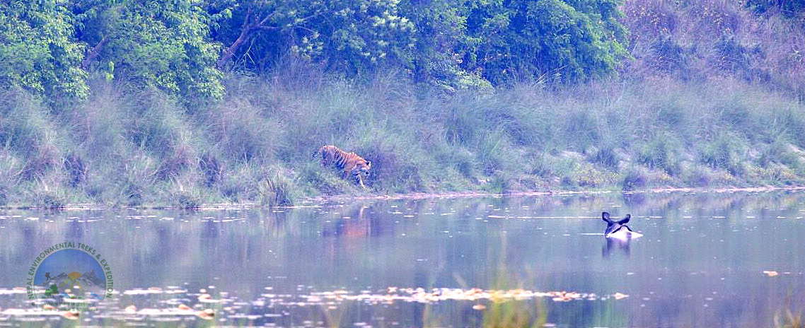 Bardiya National Park Tour