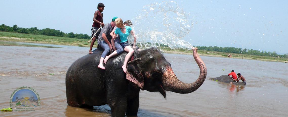 Elephant Bath (Chitwan National Park)