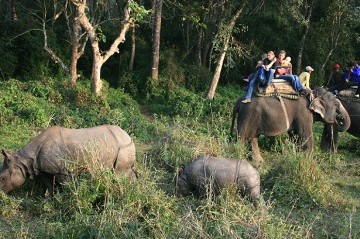 Chitwan National Park Tour : (3 nights 4 days) - Plan B